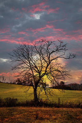Photograph - Early Winter Sunset by Debra and Dave Vanderlaan