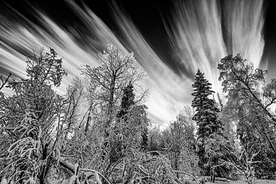 Photograph - Earth And Sky by Ted Raynor
