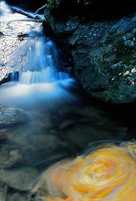Photograph - Earth And Water Spirits 8 by Rodney Lee Williams