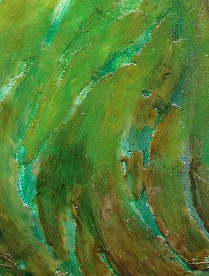 Soil Mixed Media - Earth F by Pure Abstract