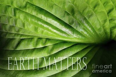 Photograph - Earth Matters Leaf by Karen Adams