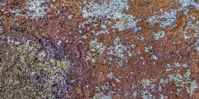 Photograph - Earth Portrait L6 by David Waldrop