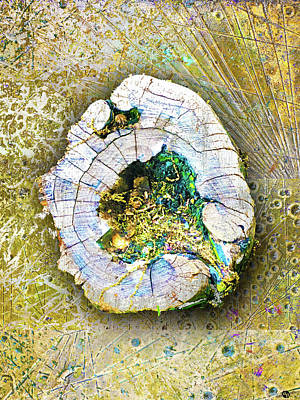 Mixed Media - Earth by Tony Rubino