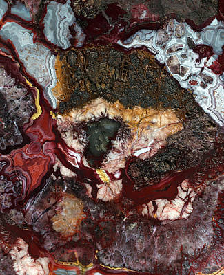 Photograph - Earth Treasures - Colorful Agate by Jaroslaw Blaminsky