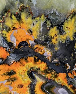 Photograph - Earth Treasures - Yellow And Black Jaspis by Jaroslaw Blaminsky