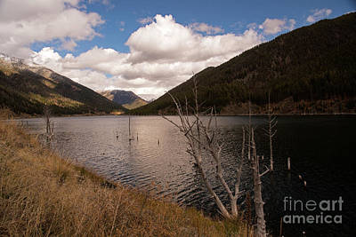 Photograph - Earthquake Lake by Cindy Murphy - NightVisions