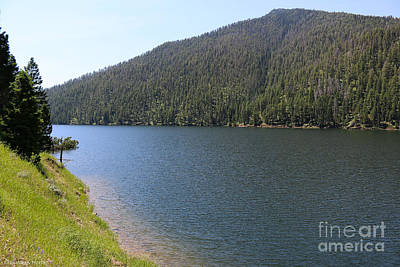 Photograph - Earthquake Lake by Susan Herber