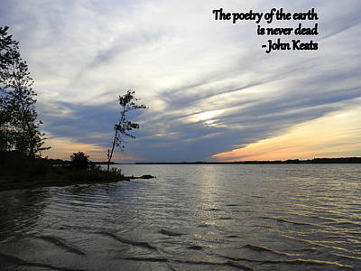 Petrie Island Photograph - Earth's Poetry by Betty-Anne McDonald