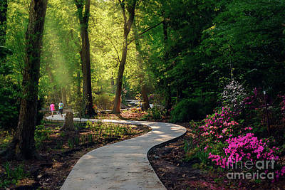 Photograph - Earyl Morning Walk Through Honor Heights Park by Tamyra Ayles