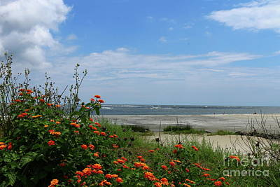 Photograph - East Beach - Golden Isles by Christiane Schulze Art And Photography