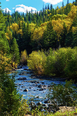 Photograph - East Fork Autumn by Jason Coward