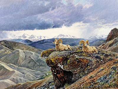 Salmon River Idaho Painting - East Fork Rams by Steve Spencer
