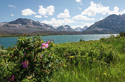 Photograph - East Glacier National Park by Margaret Pitcher
