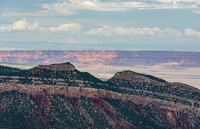 Art Print featuring the photograph East Kaibab Monocline by Gaelyn Olmsted