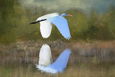 Photograph - East Of Egret by Donna Kennedy