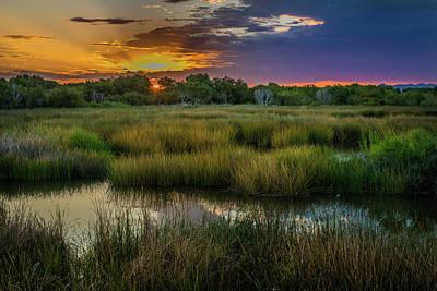 East Wetlands Sunrise Art Print