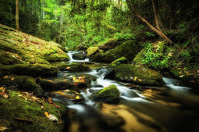 Photograph - Eastatoe Creek  by Dustin Ahrens