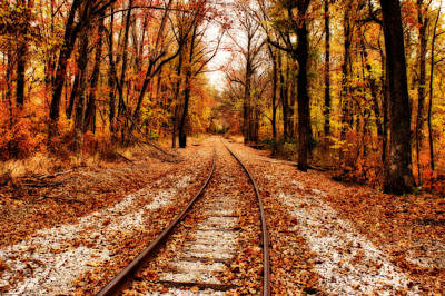 Indiana Autumn Photograph - Eastbound by Sandy Keeton