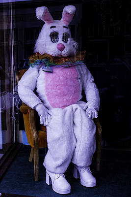 Rabbit Photograph - Easter Bunny Costume  by Garry Gay