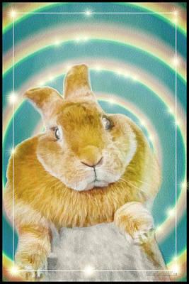 Rabbit Photograph - Easter Bunny by LeeAnn McLaneGoetz McLaneGoetzStudioLLCcom