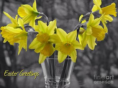 Photograph - Easter Daffodils by Joan-Violet Stretch