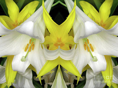 Photograph - Easter Lilies And Tulips Mirrored by Rose Santuci-Sofranko