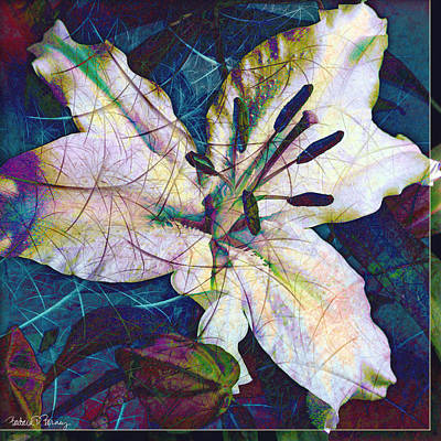 Digital Art - Easter Lily by Barbara Berney