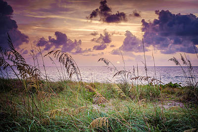 Photograph - Easter Sunrise  by Louis Ferreira