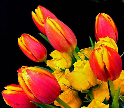 Photograph - Easter Tulips And Roses by Marie Hicks
