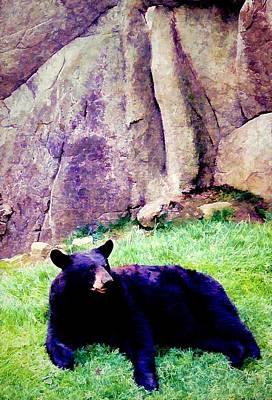 Smokey Mountains Digital Art - Eastern Black Bear by Jan Amiss Photography