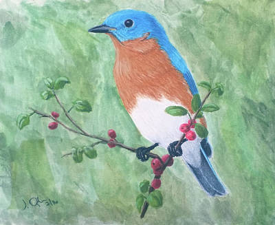 Painting - Eastern Bluebird by Joseph Ogle