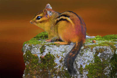 Digital Art - Eastern Chipmunk by Rusty R Smith