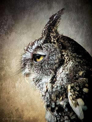 Eastern Gray Morph Screech Owl Profile Art Print by Melissa Bittinger