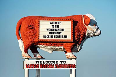 Eastern Montana Fairgrounds Cow Art Print