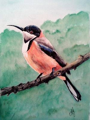 Painting - Eastern Spinebill by Anne Gardner