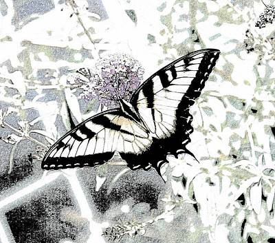 Southern Indiana Digital Art - Eastern Tiger Swallowtail Butterfly - Bleached Abstract  by Scott D Van Osdol