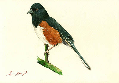 Eastern Towhee Bird Original by Juan  Bosco