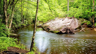 Photograph - Eastern Trout Stream by Phil Rispin