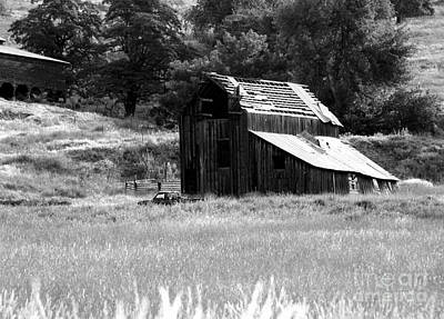 Photograph - Eastern Washington Barn by Denise Bruchman