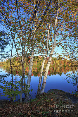 Photograph - Eastman Pond Grantham New Hampshire Fall by Edward Fielding