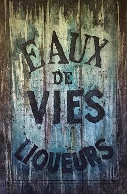Painting - Eaux De Vies by Diane Fujimoto