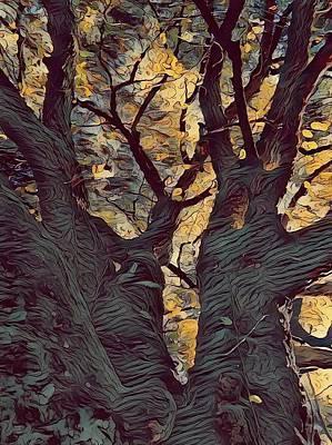 Digital Art - Ebeling Oak by Leapdaybride Visual Arts