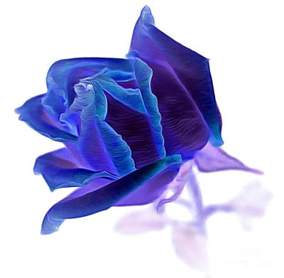 Blue Flowers Photograph - Eccentric Ways by Krissy Katsimbras
