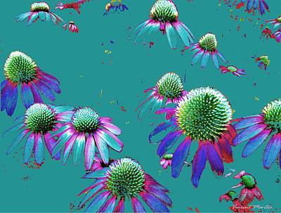 Echinacea Flying Flowers Art Print