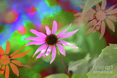 Digital Art - Echinacea Stamp by Donna Munro