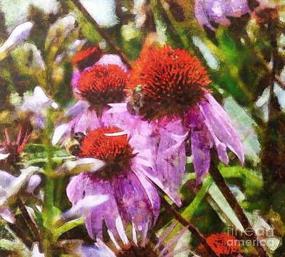 Digital Art - Echinacea Watercolor 2015 by Kathryn Strick