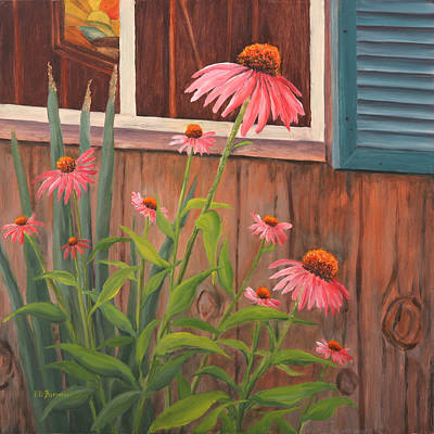 Shed Painting - Echinecea Flower by Elaine Farmer