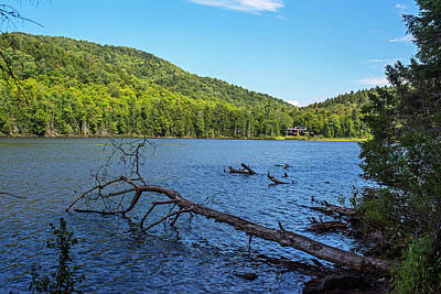 Photograph - Echo Lake Lake Placid Ny New York Cobble Lookout Trail Fallen Tree by Toby McGuire