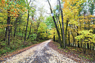 Photograph - Echo Valley Road by Bonfire Photography