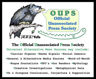 Drawing - Real Fake News Oups Official Unassociated Press Society by Dawn Sperry
